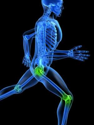 İnsan vücudunda 360 eklem olduğunu belirten hadisi nasıl anlamak gerekir?