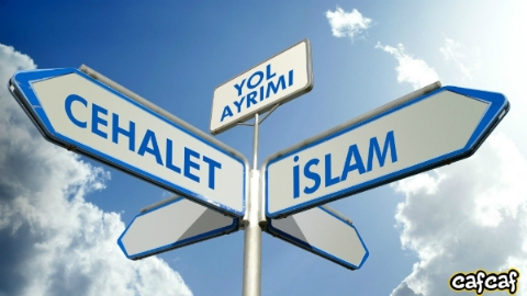 Allah Teâla dileyeni mi, dilediğini mi hidayete erdirmektedir?